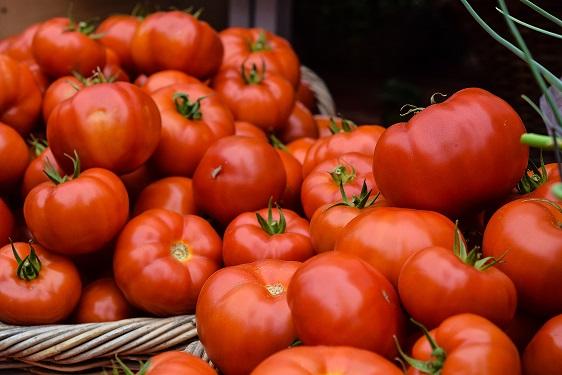 KIVU TOMATO : Production (transformation) et commercialisation des tomates